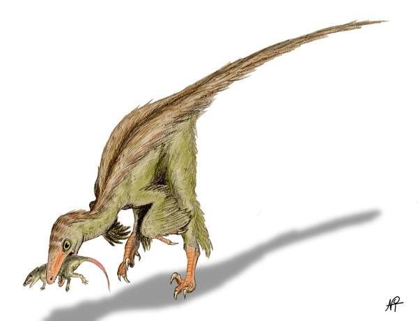 Troodon by NTamura