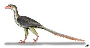 Archaeopteryx by NTamura