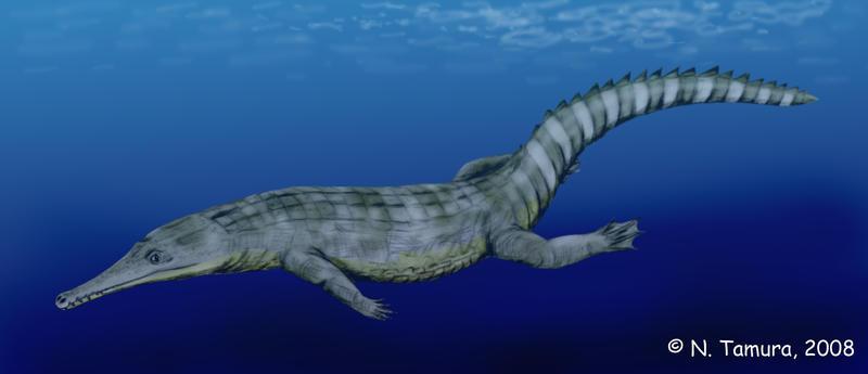 Guarinisuchus by NTamura
