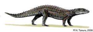 Comahuesuchus