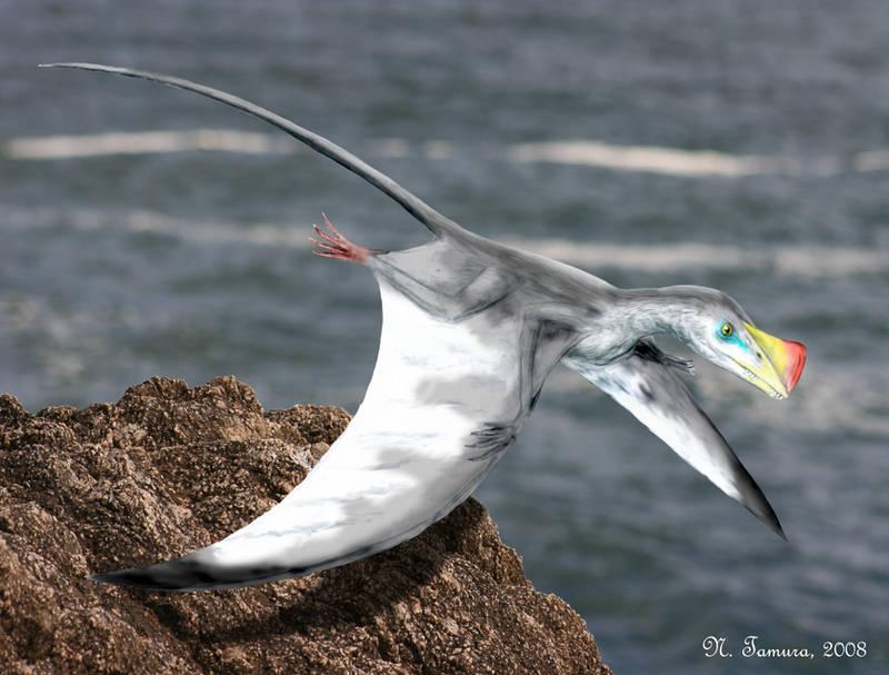 Austriadactylus by NTamura