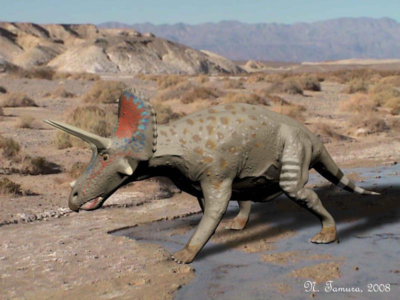 Triceratops by NTamura