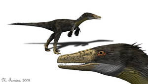 Austroraptor II