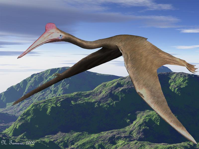 Quetzalcoatlus by NTam...