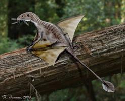 Peteinosaurus by NTamura