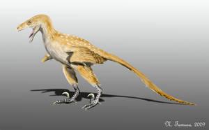 Bambiraptor by NTamura