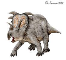 Medusaceratops by NTamura