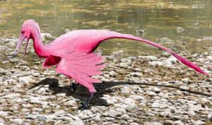 Buitreraptor by NTamura