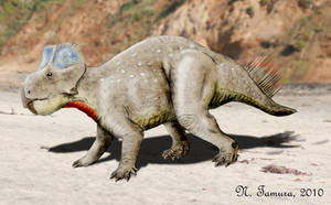 Zhuchengceratops by NTamura