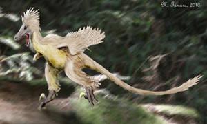 Linheraptor by NTamura