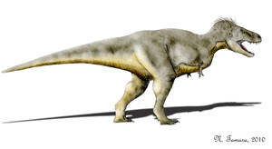 Tyrannosaurus by NTamura