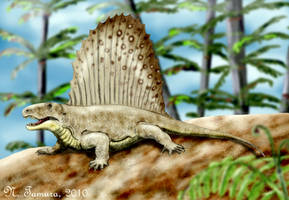 Dimetrodon II by NTamura