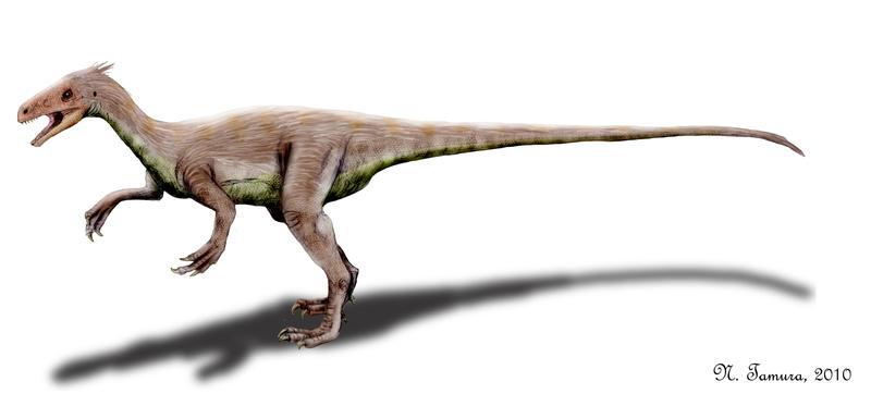 Ornitholestes by NTamura