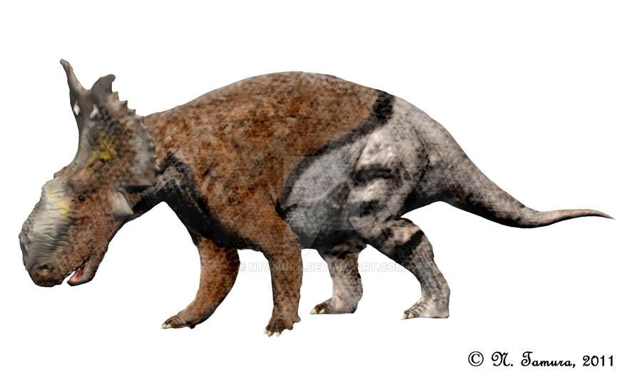 Pachyrhinosaurus II