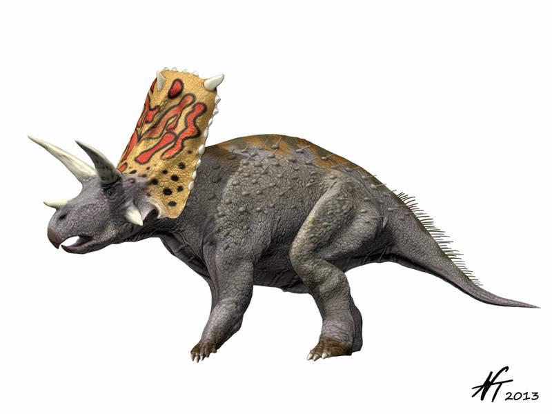Bravoceratops by NTamura