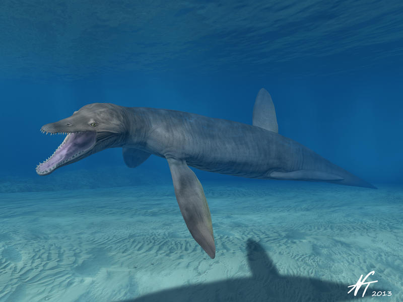 Pliosaurus kevani by NTamura