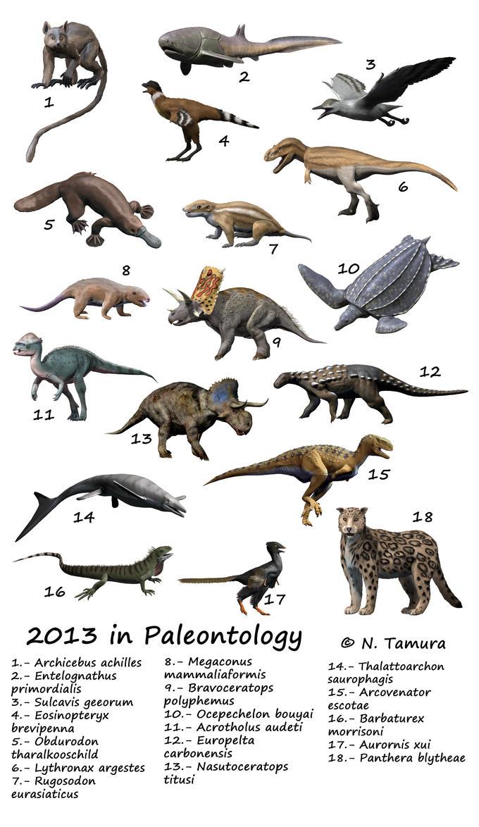 2017 in paleontology