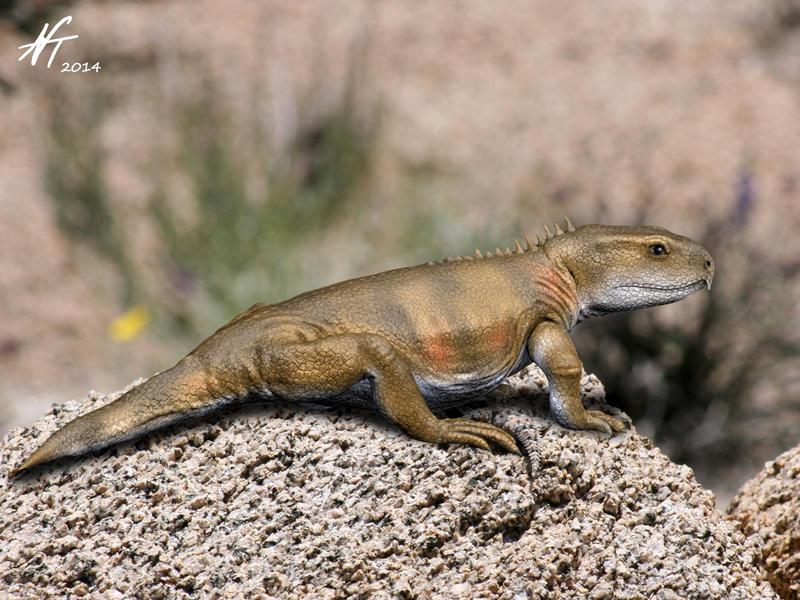 Priosphenodon by NTamura