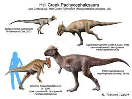 HellCreek pachycephalosaurs