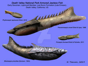 Death Valley Armored Fish