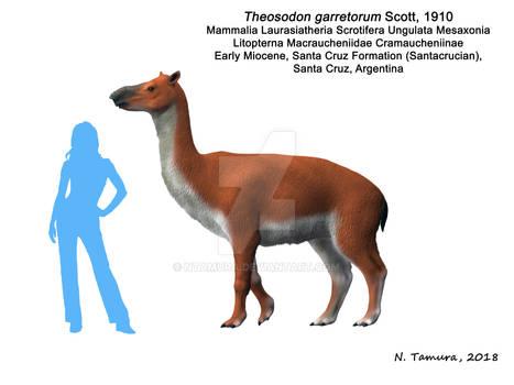 Theosodon garretorum