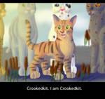 Crookedkit's New Name