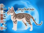 Jayfeather of ThunderClan - Faded Boundaries