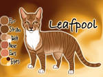 Leafpool of ThunderClan - Faded Boundaries by Jayie-The-Hufflepuff