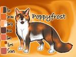 Poppyfrost of ThunderClan
