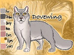 Dovewing of ThunderClan - Faded Boundaries