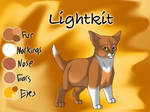 Lightkit of ThunderClan - The Broken Shadow