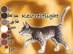 Kestrelflight of WindClan - Waning Moon