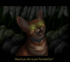 Would you like to join ThunderClan? by Jayie-The-Hufflepuff