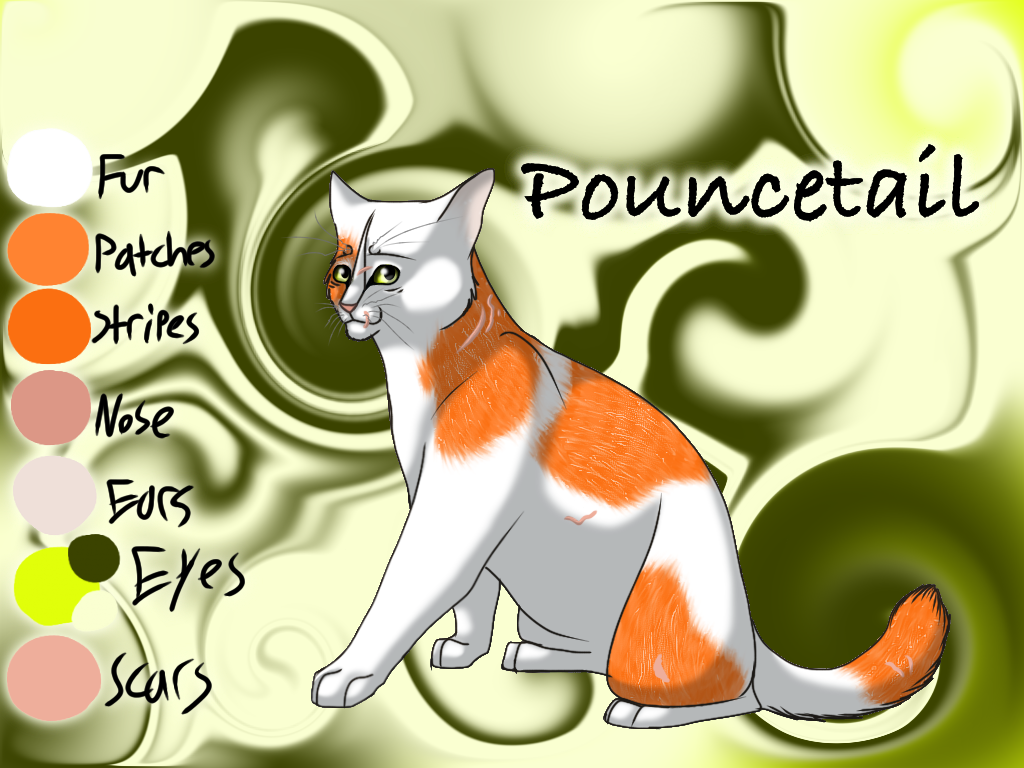 Pouncetail of RiverClan - Code of the Forest by Jayie-The-Hufflepuff