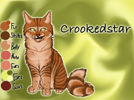 Crookedstar of RiverClan - A Dangerous Path by Jayie-The-Hufflepuff
