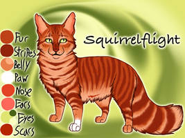 Squirrelflight of ThunderClan - Silent Sacrifice by Jayie-The-Hufflepuff