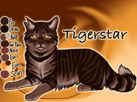 Old Tigerstar I image 2 by Jayie-The-Hufflepuff