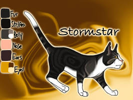 Stormstar of WindClan - After Silent Sacrifice by Jayie-The-Hufflepuff