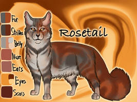 Rosetail of ThunderClan - Into the Wild by Jayie-The-Hufflepuff