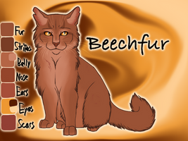 Beechfur of RiverClan - The Fourth Apprentice by Jayie-The-Hufflepuff