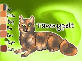 Tawnypelt of ShadowClan - Faded Boundaries by Jayie-The-Hufflepuff