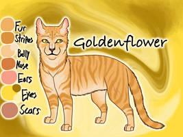 Goldenflower of ThunderClan - Sunset by Jayie-The-Hufflepuff