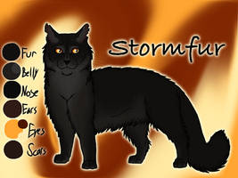 Stormfur of The Tribe of Rushing Water - SotM by Jayie-The-Hufflepuff