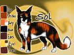 Old Sol image