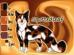 Old Spottedleaf image 3