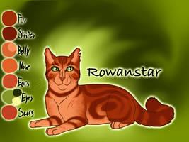 Rowanstar of ShadowClan - The Broken Shadow by Jayie-The-Hufflepuff
