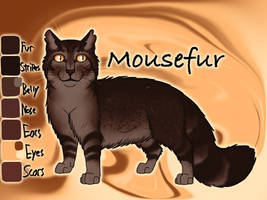 Mousefur of ThunderClan - The Last Hope by Jayie-The-Hufflepuff