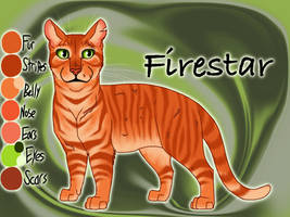 Firestar of ThunderClan - The Last Hope by Jayie-The-Hufflepuff