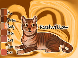 Redwillow of ShadowClan - The Last Hope by Jayie-The-Hufflepuff