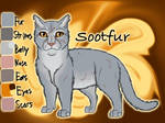 Sootfur of ThunderClan - Twilight